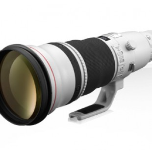 EF 600mm f/4L IS II USM, Lens for Wildlife and Sports Photographer