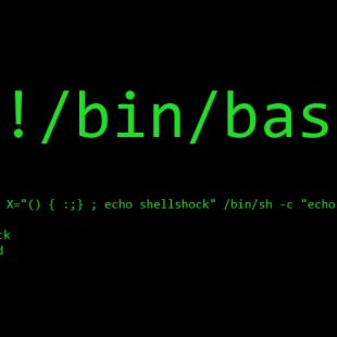 shellshock, Unix Bash shell vulnerabilities plague